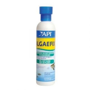 Algaefix 480 mL for fish pond algae