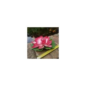 Large red floating water lily 280mm