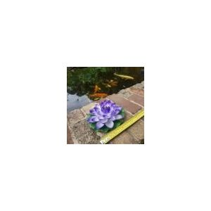 medium floating purple waterlily 160mm