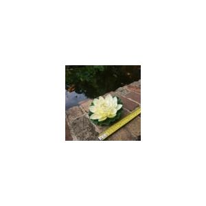 medium white floating water lily 160mm